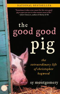 The Good Good Pig the Extraordinary Life of Christopher Hogwood